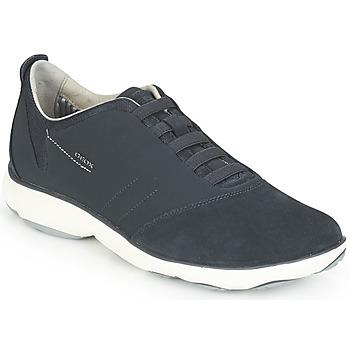 Chaussures Homme Baskets basses Geox NEBULA Bleu