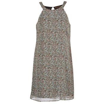 Vêtements Femme Robes courtes DDP DAMERIA Multicolore