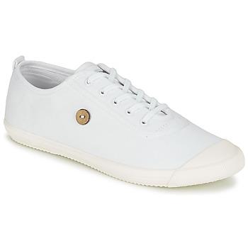 Chaussures Baskets basses Faguo OAK Blanc