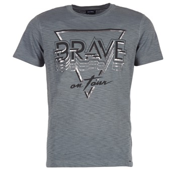 Vêtements Homme T-shirts manches courtes Diesel T DIEGO NE Gris