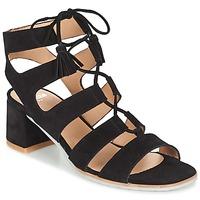 Chaussures Femme Sandales et Nu-pieds Perlato QUEZOKA Noir