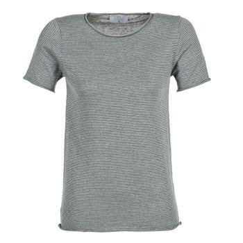 Vêtements Femme T-shirts manches courtes Casual Attitude GENIUS Gris
