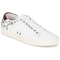 Chaussures Femme Baskets basses Ash DAZED Blanc