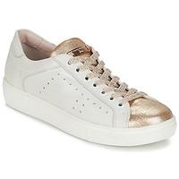 Chaussures Femme Baskets basses Tosca Blu  Blanc / Doré