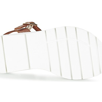 Citrouille et Compagnie GLAPOTI Camel