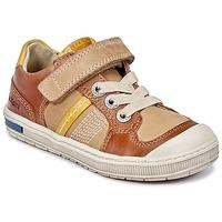 Chaussures Garçon Baskets basses Kickers IGORLOW Camel
