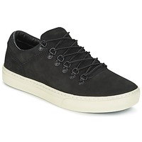 Chaussures Homme Baskets basses Timberland ADV 2.0 CUPSOLE ALPINE OX Noir