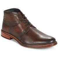 Chaussures Homme Boots Daniel Hechter  Marron foncé
