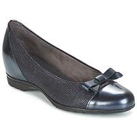 Chaussures Femme Ballerines / babies Pitillos 3614 Marine