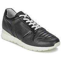 Chaussures Femme Baskets basses Bikkembergs KATE 420 Noir