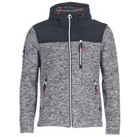 Vêtements Homme Sweats Superdry STORM MOUNTAIN ZIPHOOD Gris