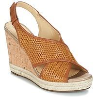 Chaussures Femme Sandales et Nu-pieds Geox JANIRA C Marron