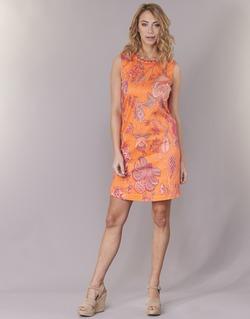 Vêtements Femme Robes courtes Derhy ANTILLAIGAN Orange