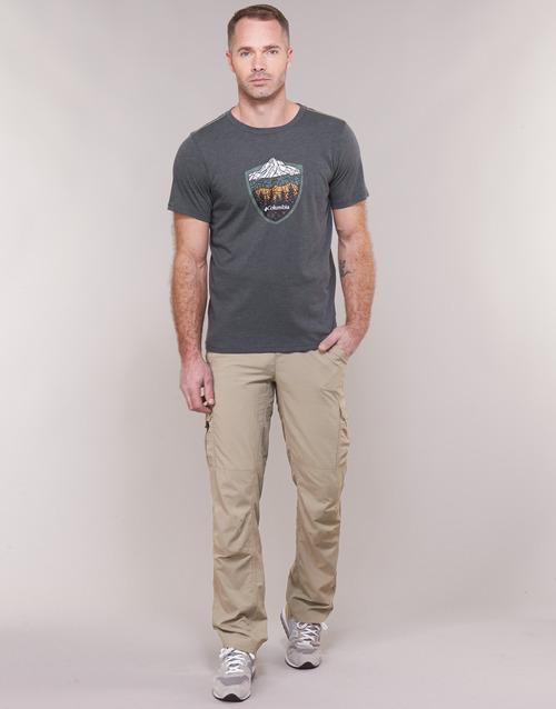 Vêtements Homme Pantalons cargo Columbia SILVER RIDGE II CARGO Beige