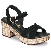 Chaussures Femme Sandales et Nu-pieds Musse & Cloud LARISE Noir