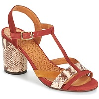 Chaussures Femme Sandales et Nu-pieds Chie Mihara UJO Marron