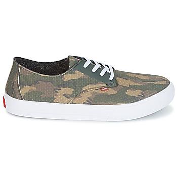 Chaussures de Skate Globe Motley LYT
