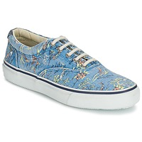 Chaussures Homme Baskets basses Sperry Top-Sider STRIPER HAWAIIAN Bleu