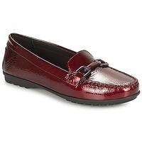 Chaussures Femme Mocassins Geox D ELIDIA Bordeaux