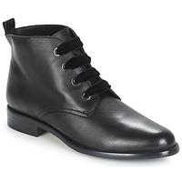 Chaussures Femme Boots André THAO Noir