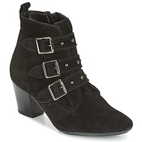 Chaussures Femme Bottines André TRACY Noir