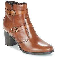 Chaussures Femme Boots André TORI Marron