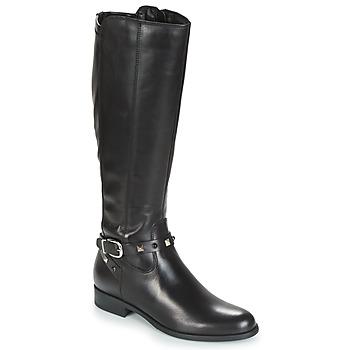 Chaussures Femme Bottes ville André TESS Noir