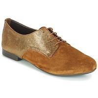 Chaussures Femme Derbies André COMPLICE Marron
