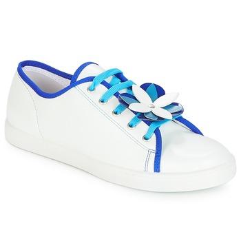Chaussures Femme Baskets basses André GUIMAUVE Blanc