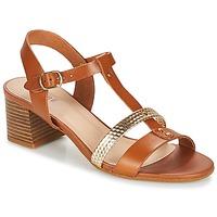 Chaussures Femme Sandales et Nu-pieds André ANTIGUA Camel