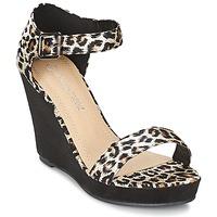 Chaussures Femme Sandales et Nu-pieds Moony Mood EVONGA Noir / Léopard