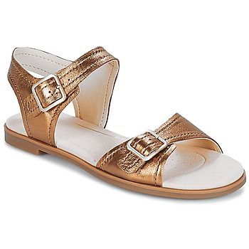Chaussures Femme Sandales et Nu-pieds Clarks Bay Primrose Bronze Metallic