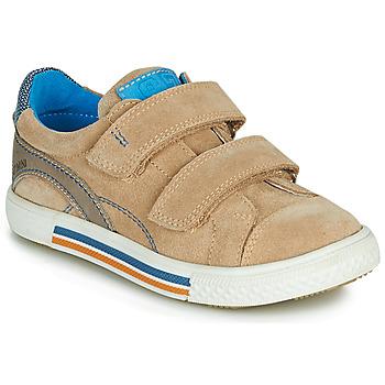 Chaussures Garçon Baskets basses Catimini PERRUCHE Beige
