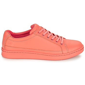 Baskets basses Timberland San Francisco Flavor Oxford