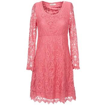 Vêtements Femme Robes courtes Cream ANNEMON LACE Rose