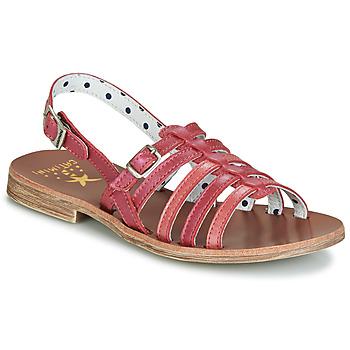 Chaussures Fille Sandales et Nu-pieds Catimini NOBO Rose